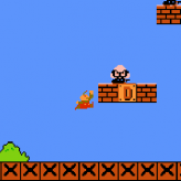 Project Super Mario Bros.