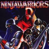 The Ninja Warriors